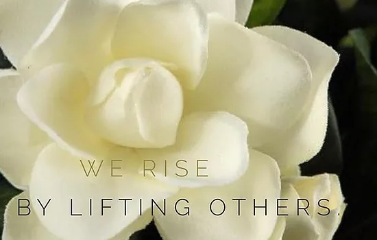 we rise by lifting others - Family Recovery Live Coach - Tricia Hocker